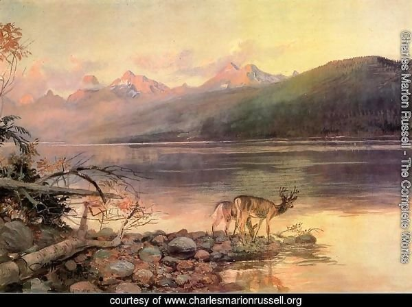 Deer at Lake McDonald