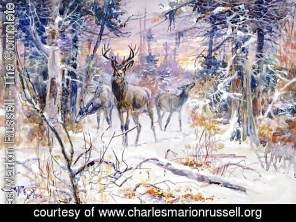 Charles Marion Russell - Deer in a Snowy Forest
