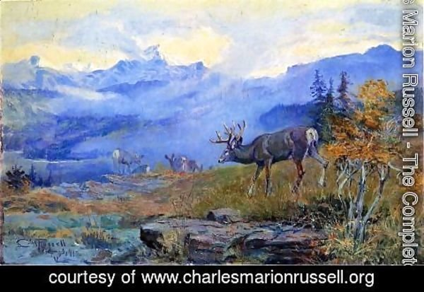 Charles Marion Russell - Deer Grazing