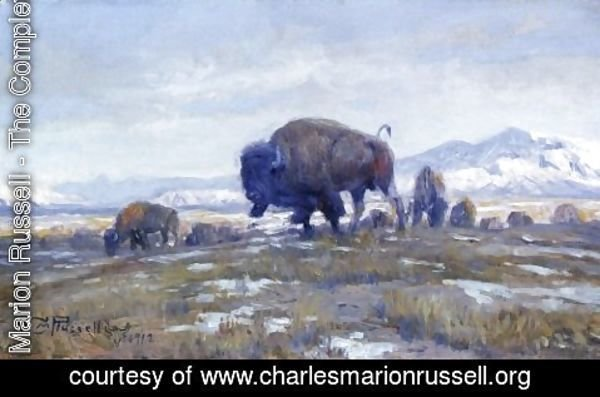 Charles Marion Russell - Buffalo Herd